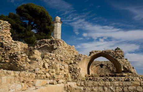 פעילויות שאסור לפספס ביהודה ושומרון